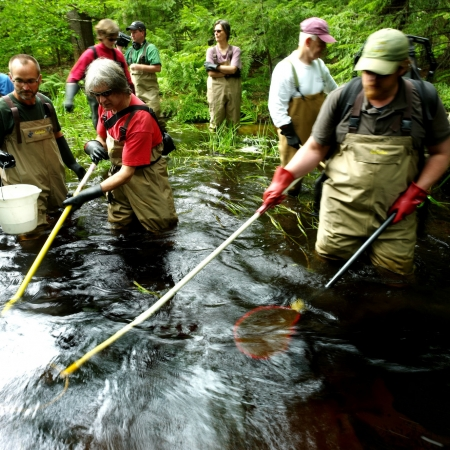 people working in river wearing waders